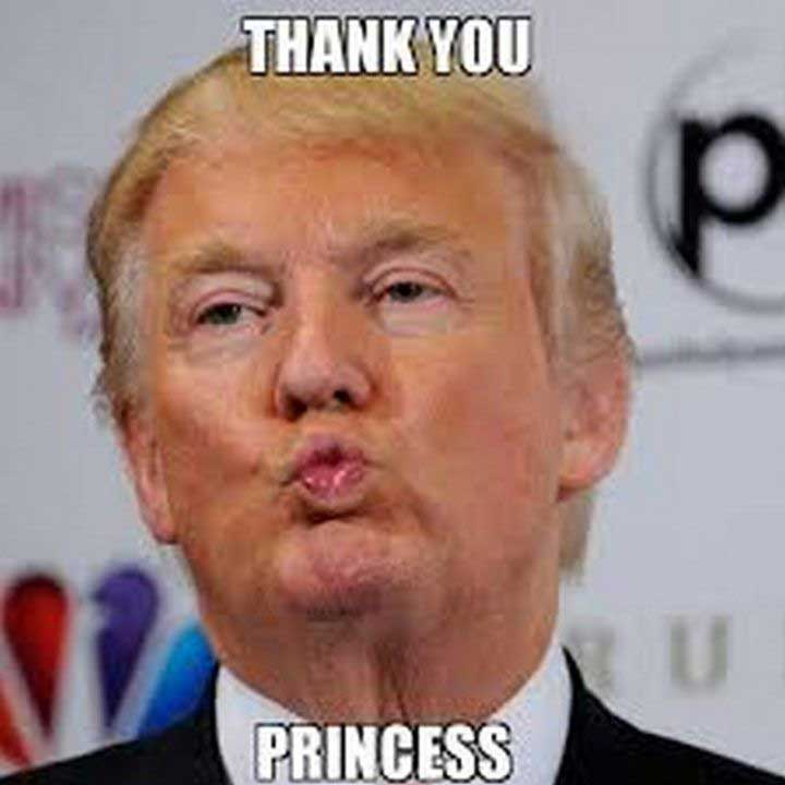 President Trump Thank You Memes Zip File Downlaod
