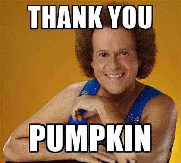Pumpkin Thank You Memes Zip File