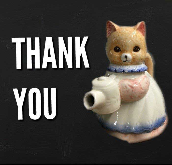 Thank You Cats